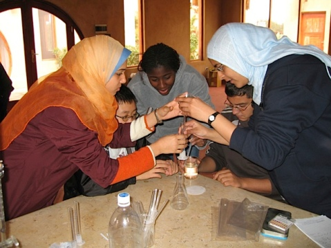 New York-Cairo High School Science Exchange