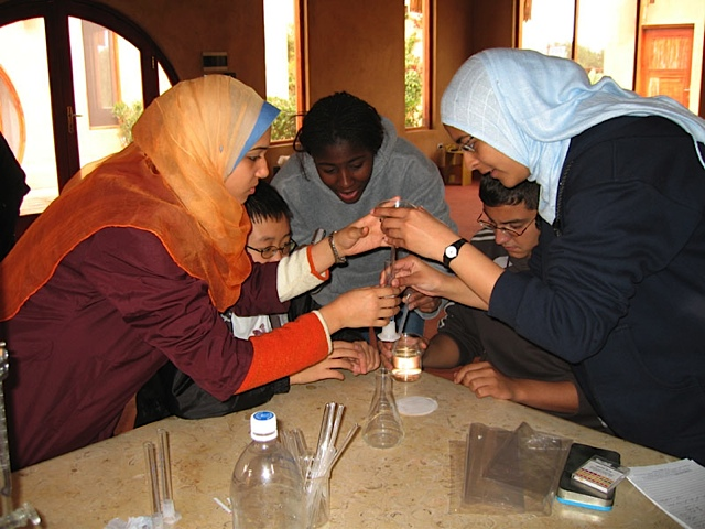New York-Cairo High School Science Exchange